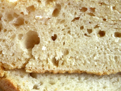 no-knead-bread-5