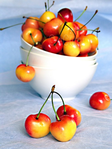 Rainier Cherries 3