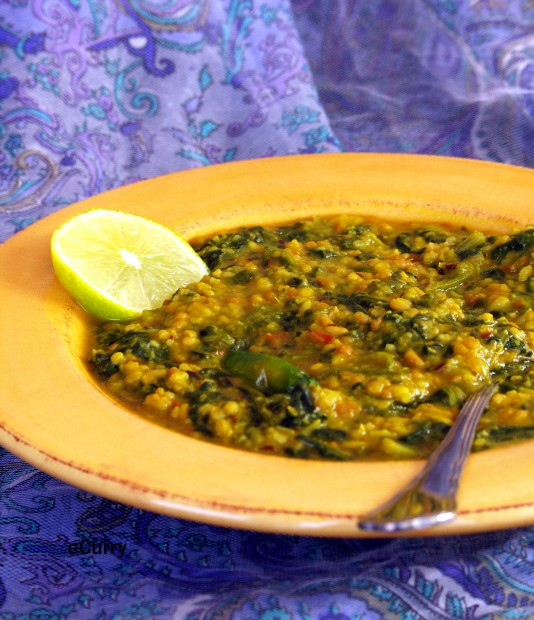 Dal Palak/Lentils with Spinach | eCurry - The Recipe Blog