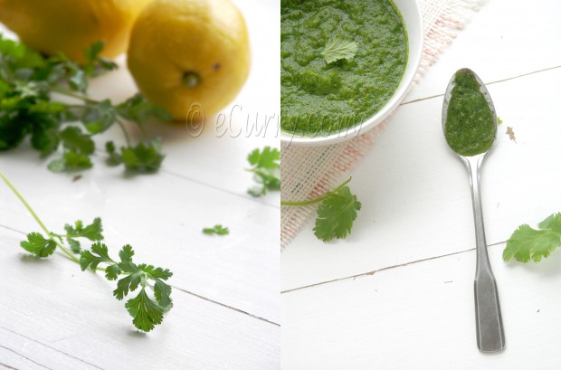 Indian Green Curry Sauce