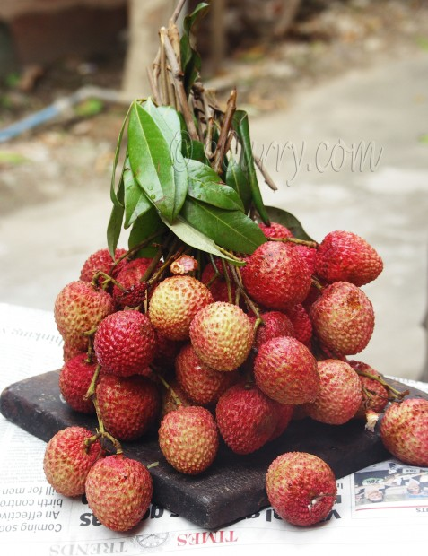 lychee