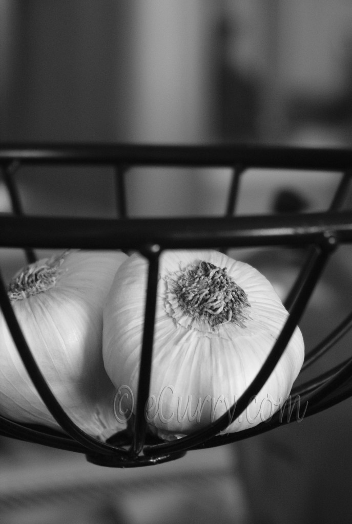garlic, black and white photography,