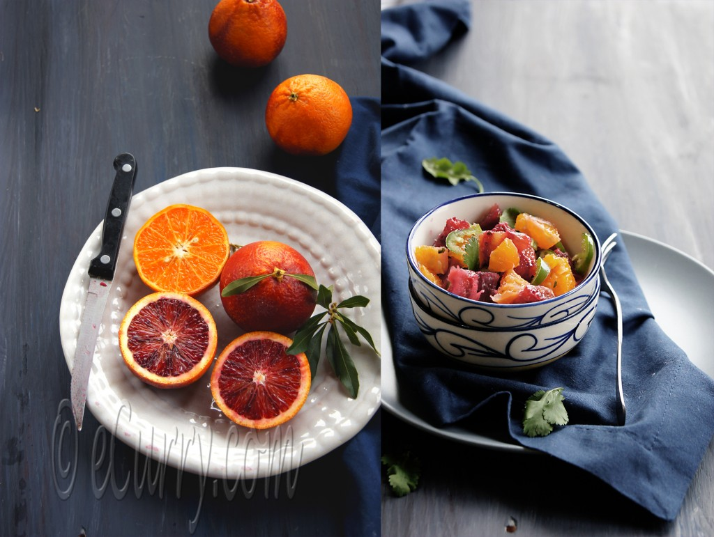Blood Orange Salsa Diptych