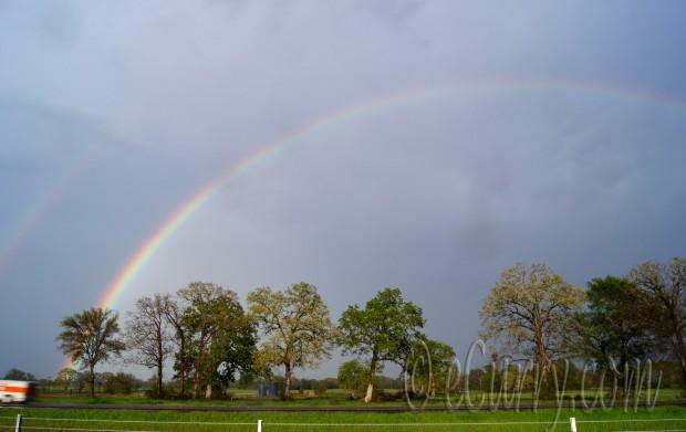 rainbow, after rain