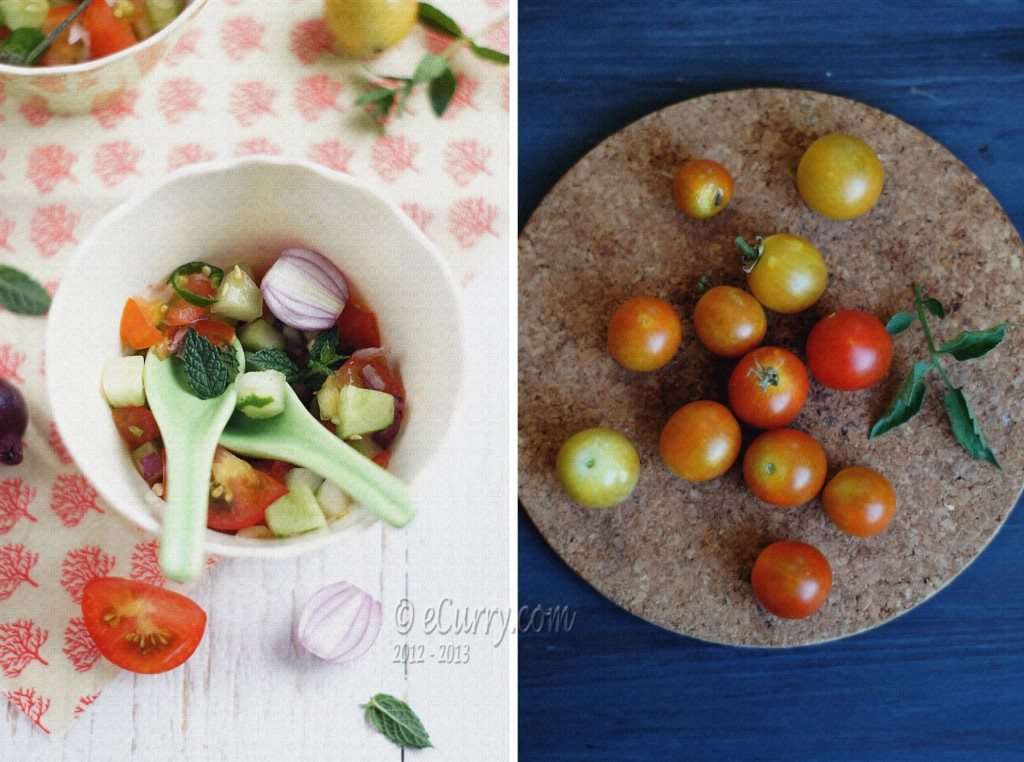 Kachumber- Cucumber Tomato Salad Diptych 1