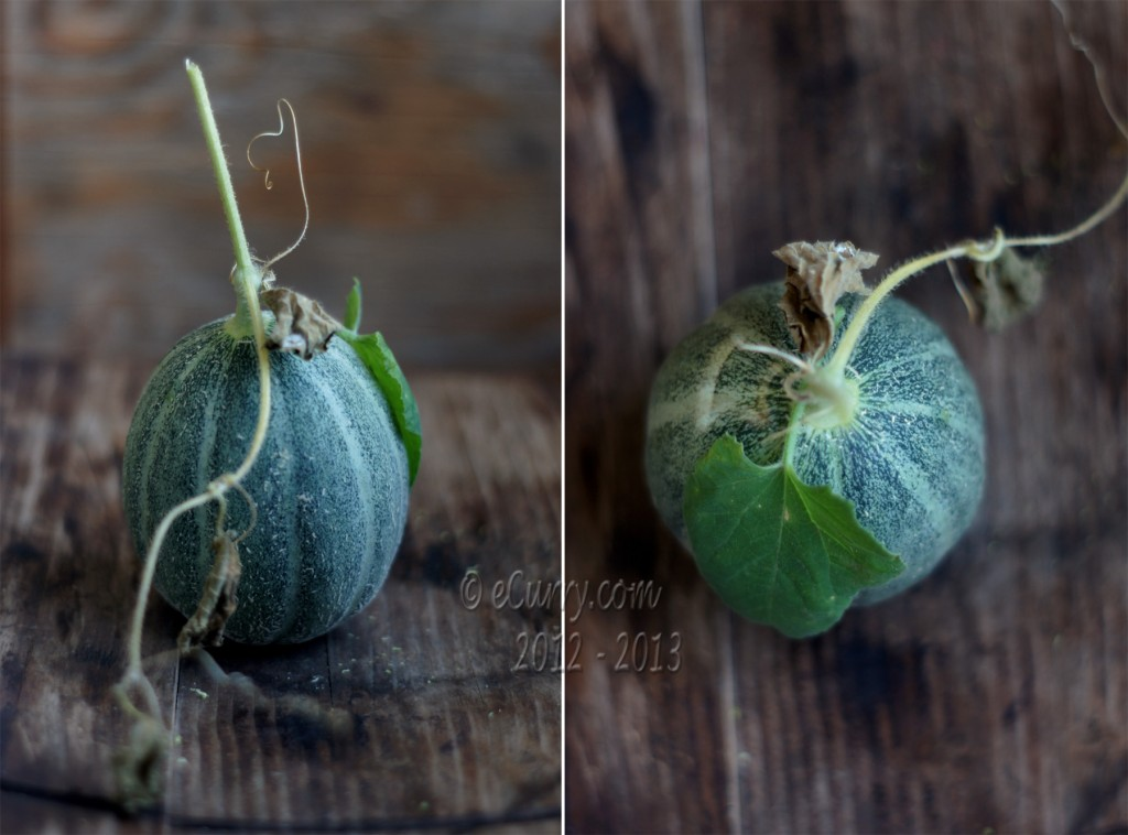 Cantaloupe Diptych  1