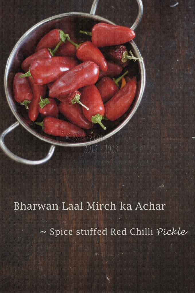Mirchi-hot-chili-pepper-3