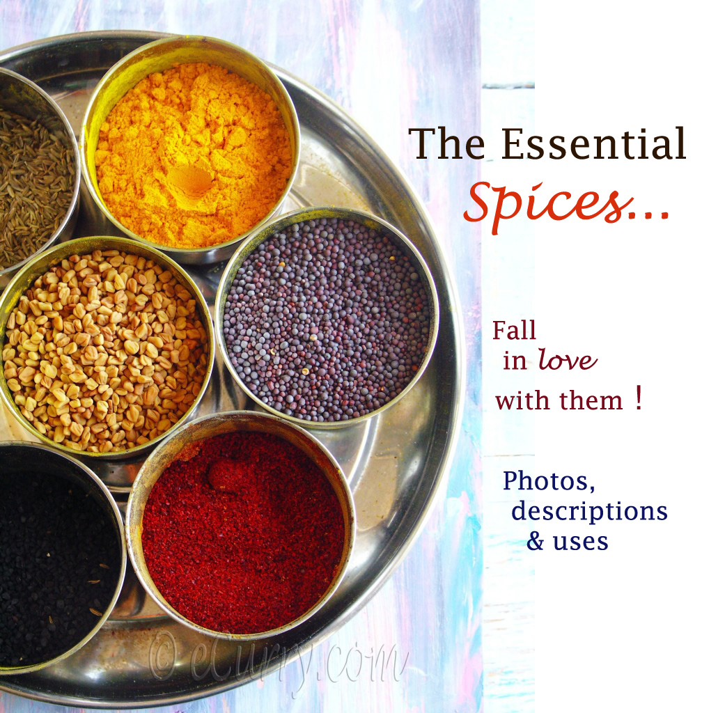 All you need to know about the Spices used in Indian Cuisine