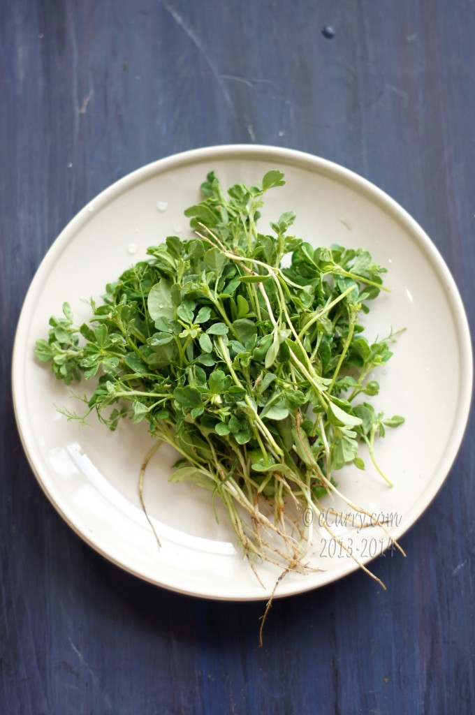 fresh-methi-1.jpg