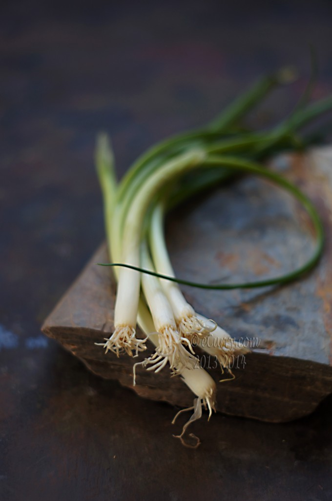 spring-onion-1.jpg