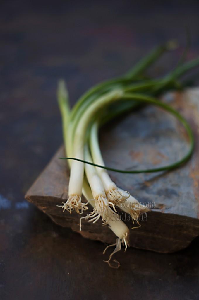 spring-onion-1.jpg