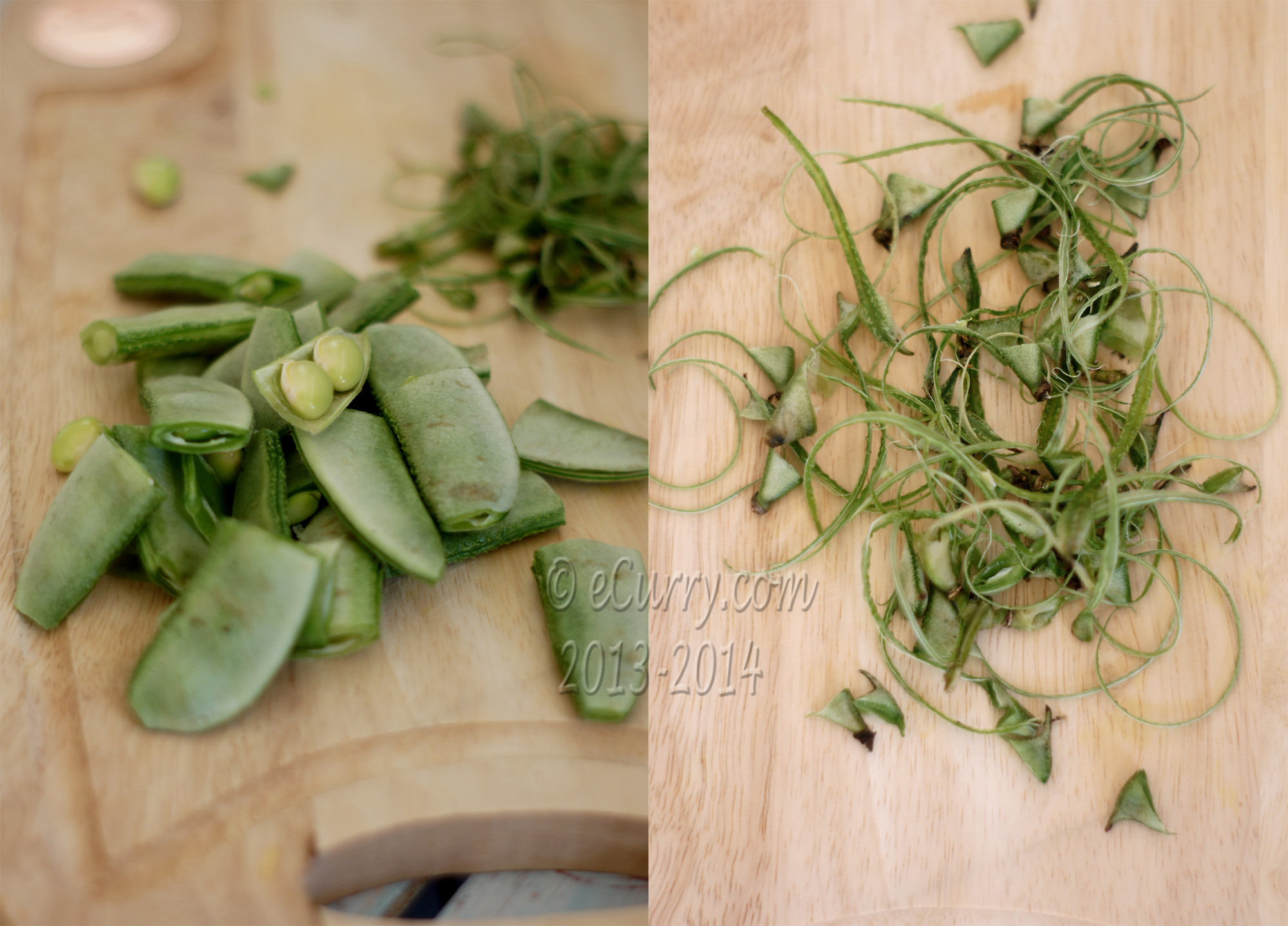 Hyacinth Bean Diptych 1