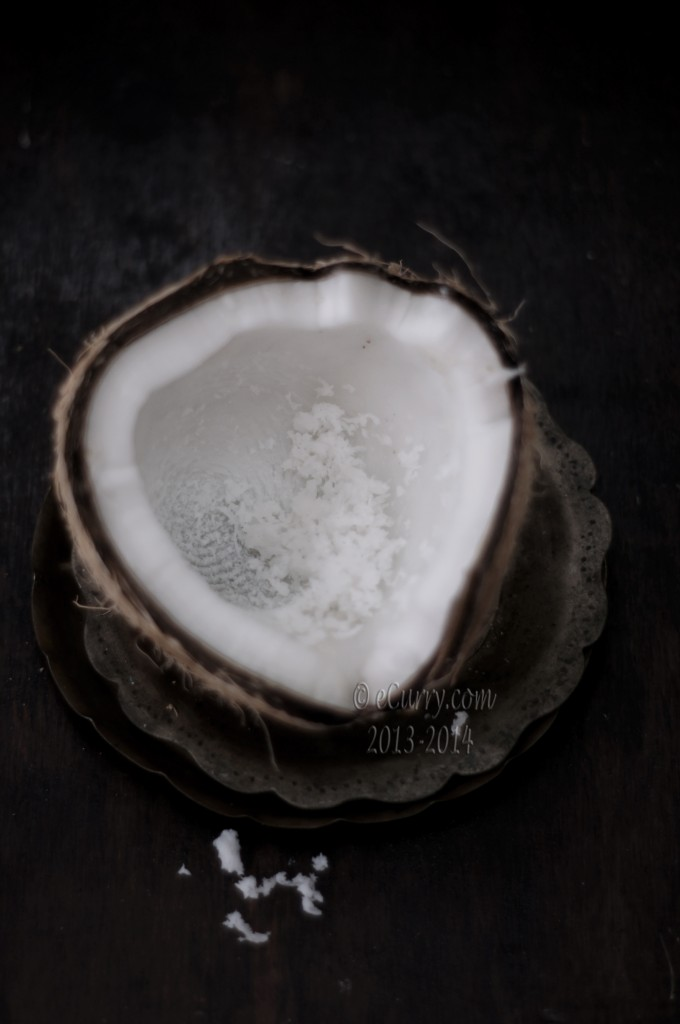 coconut-16.jpg