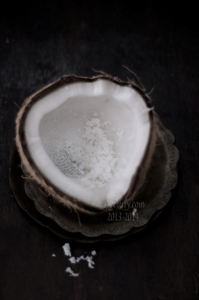 coconut-16.jpg