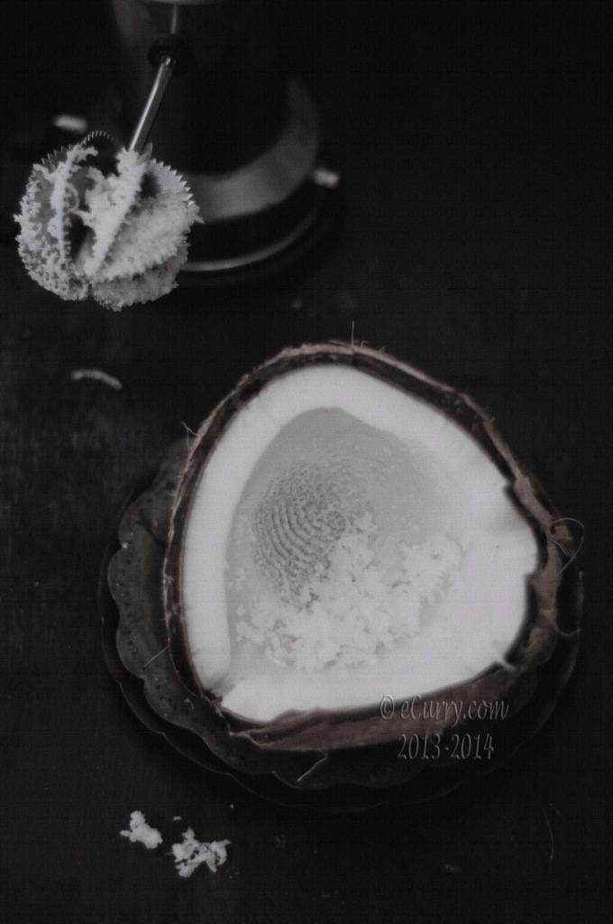 coconut-17.jpg