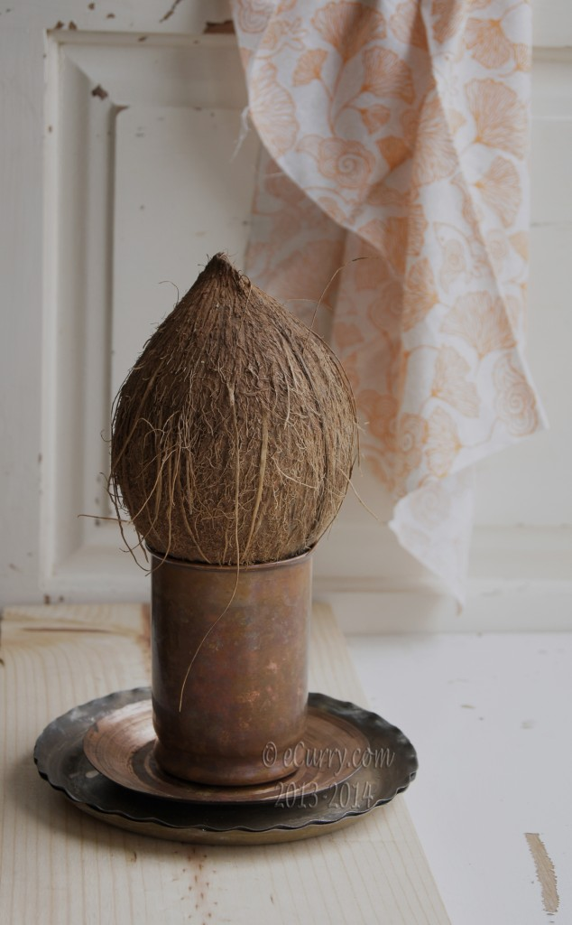 coconut-5.jpg