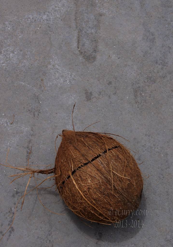 coconut-6.jpg