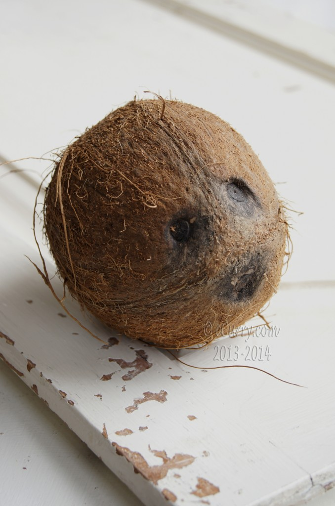 coconut-7.jpg