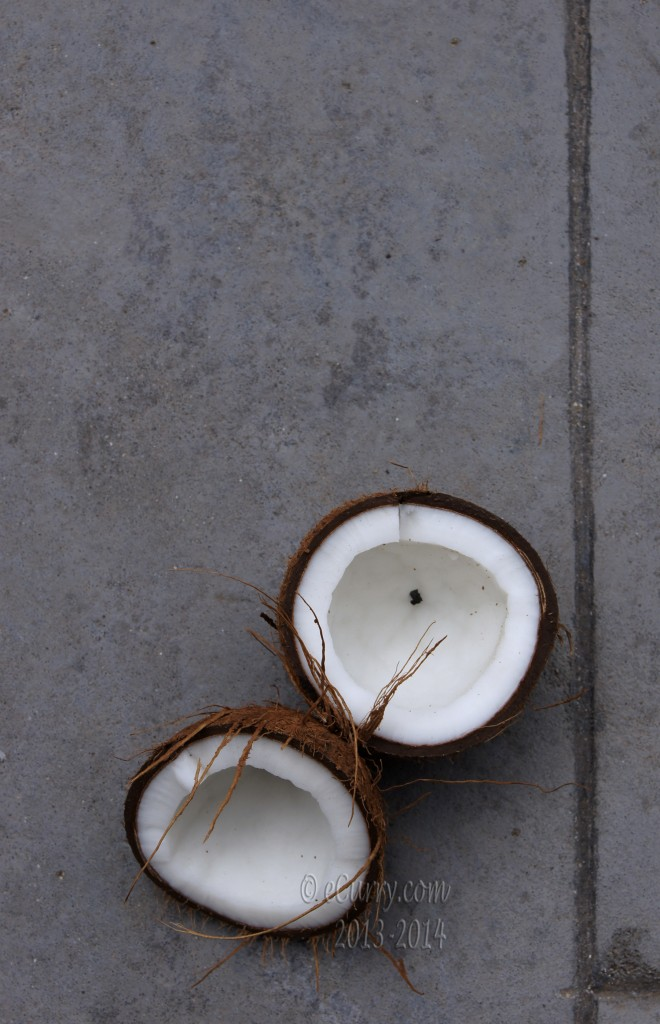 coconut-8.jpg