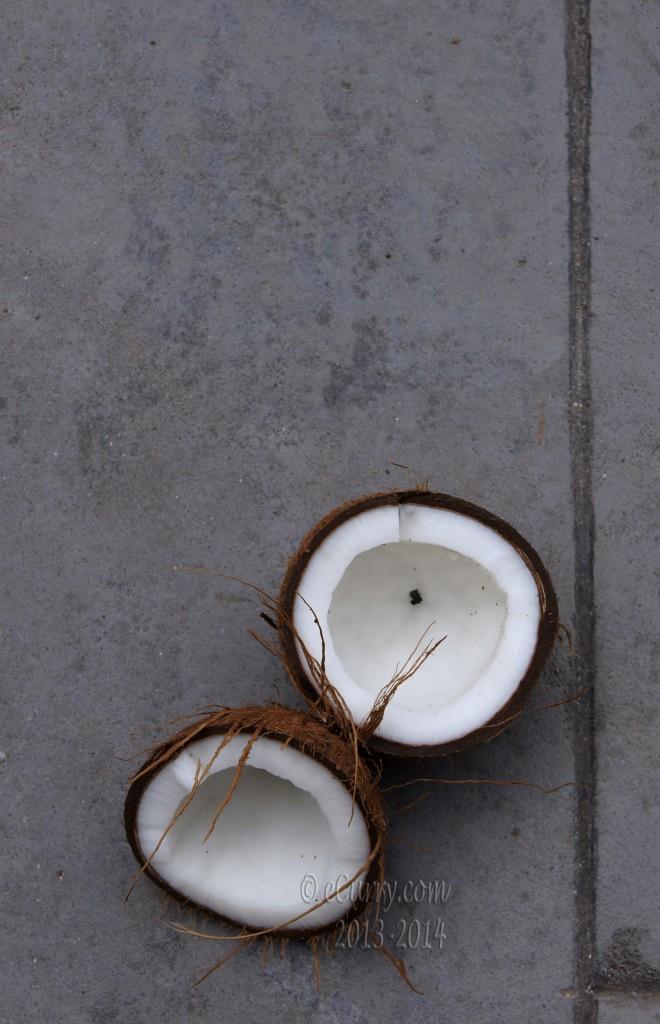 coconut-8.jpg
