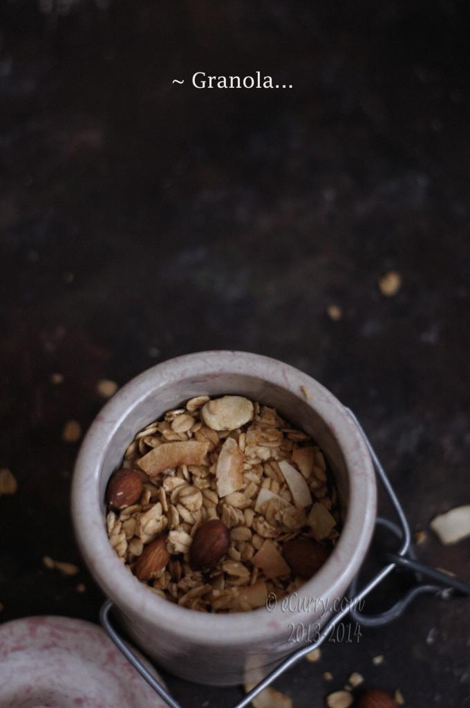 granola-1.jpg