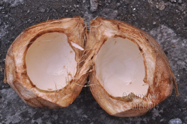 green-coconut-1.jpg