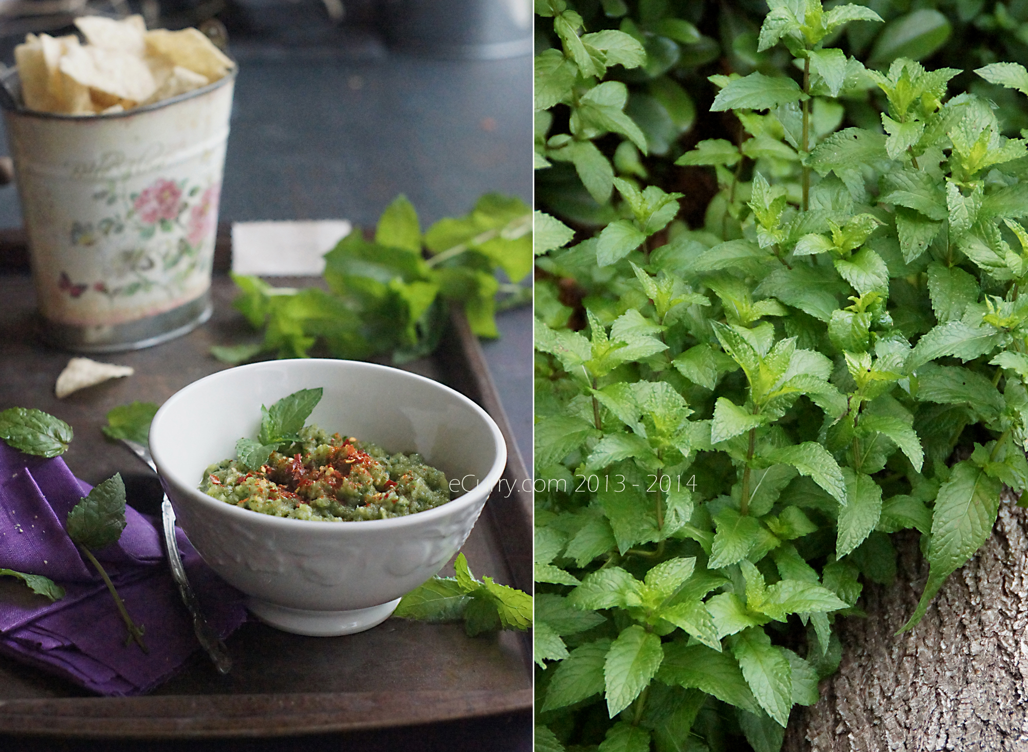 Green mango and Mint Chutney Diptych 1