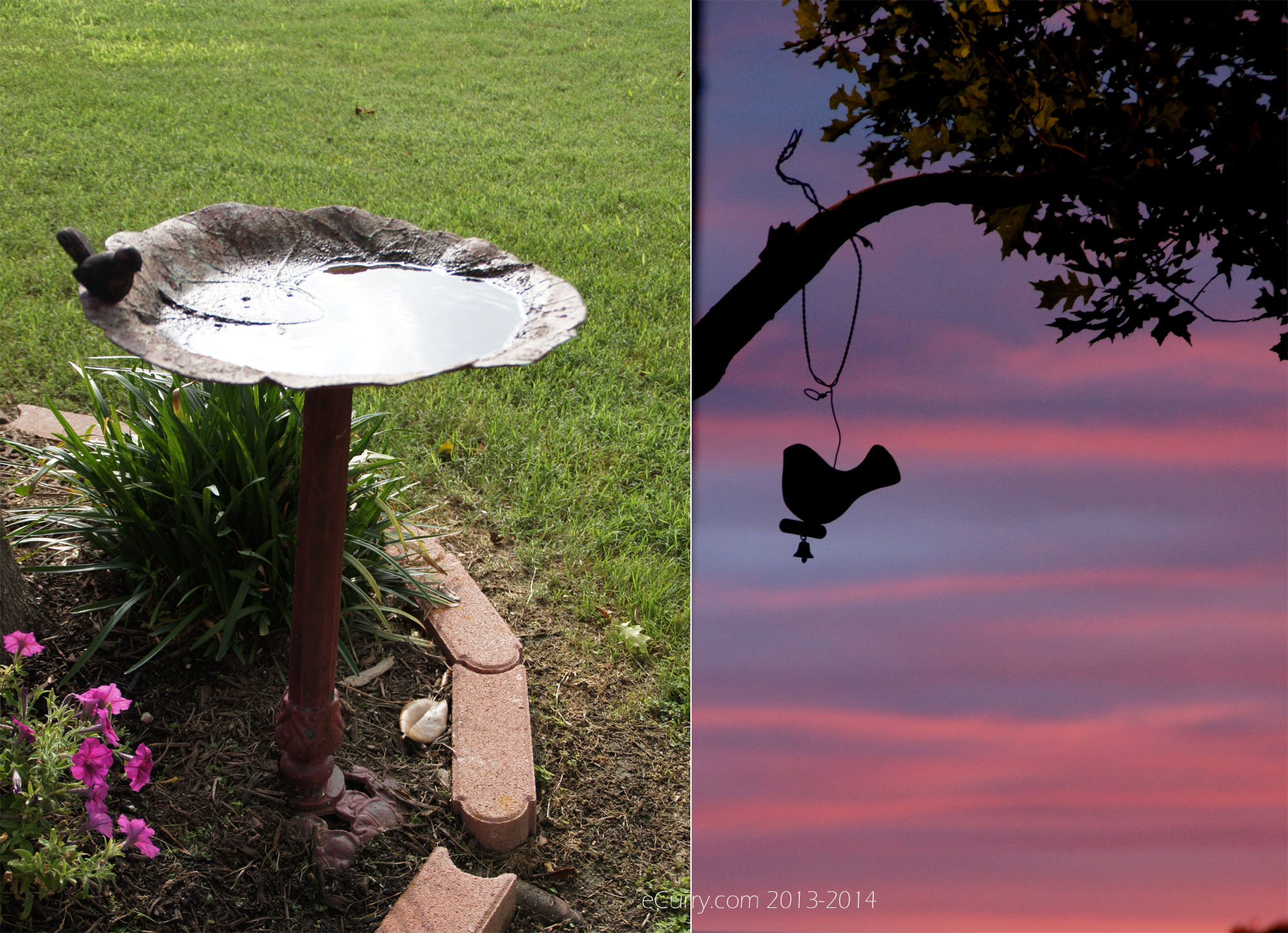 Bird_and Birdbath Diptych 1
