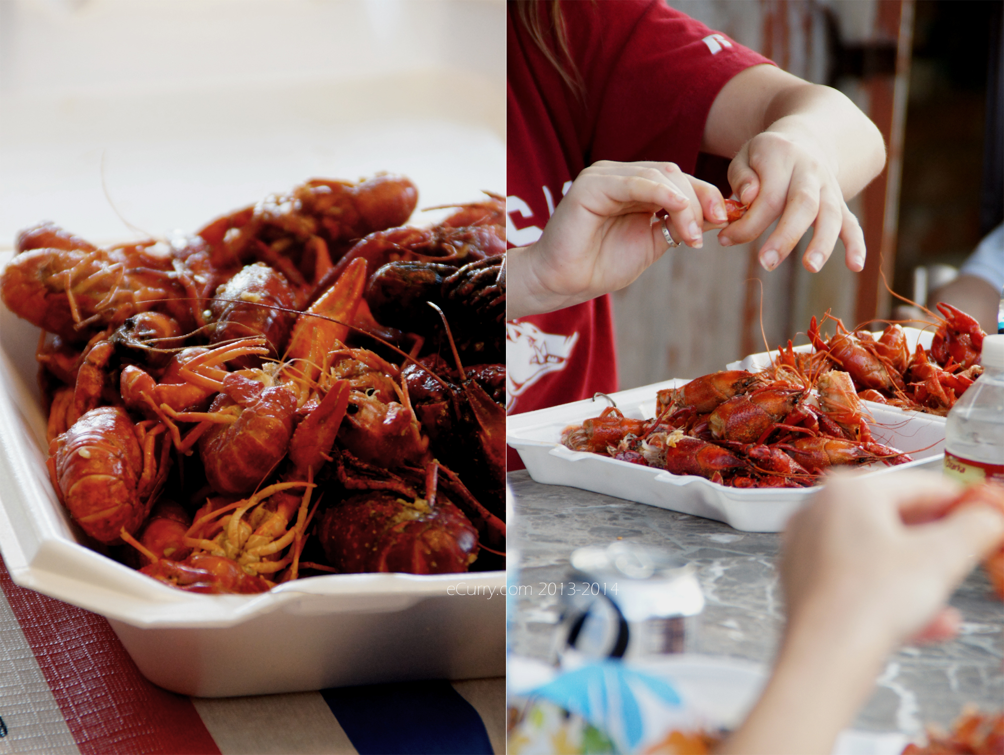 Crawfish Boil Diptych 5