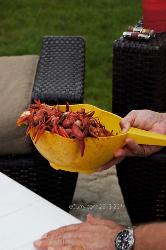 crawfish-boil-14.jpg
