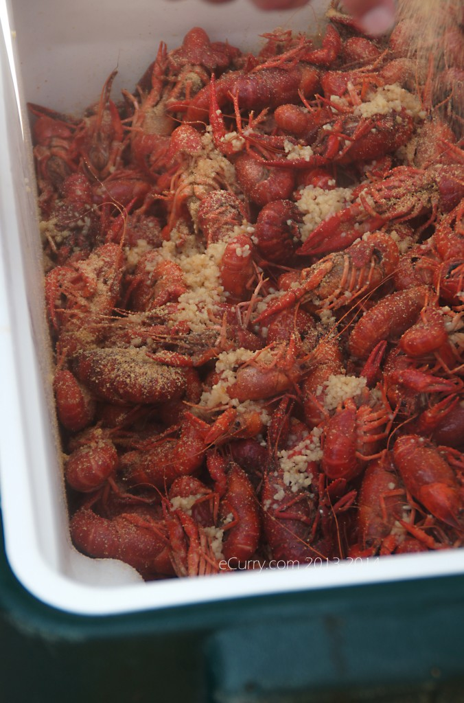 crawfish-boil-20.jpg