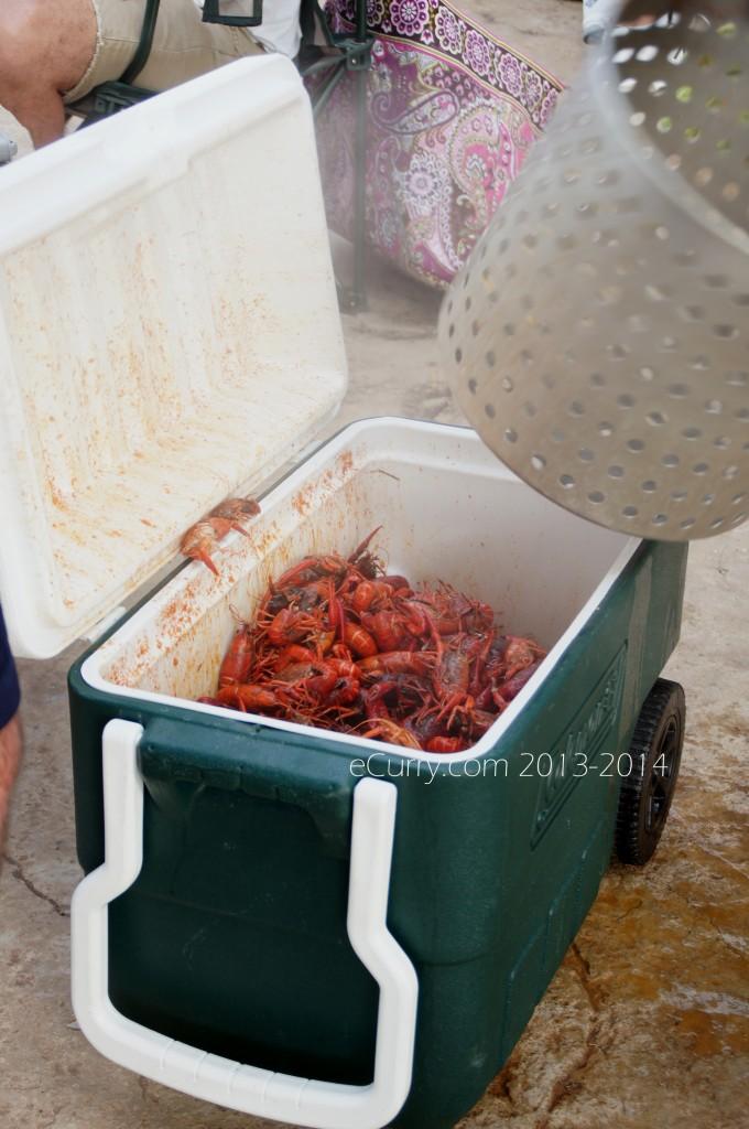 crawfish-boil-4.jpg