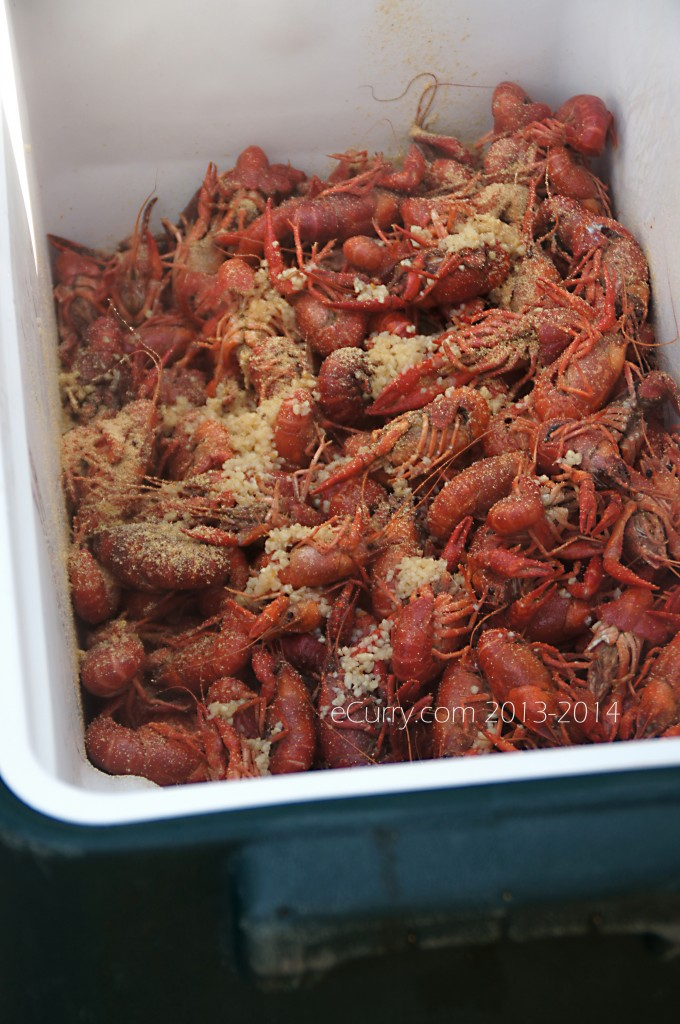 crawfish-boil-5.jpg