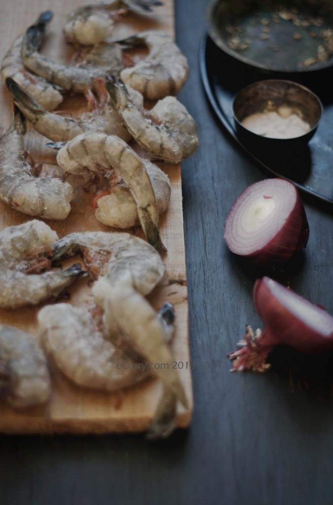 Shrimp-1.jpg