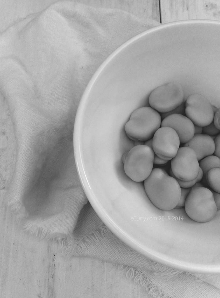 Fava Bean BW 2