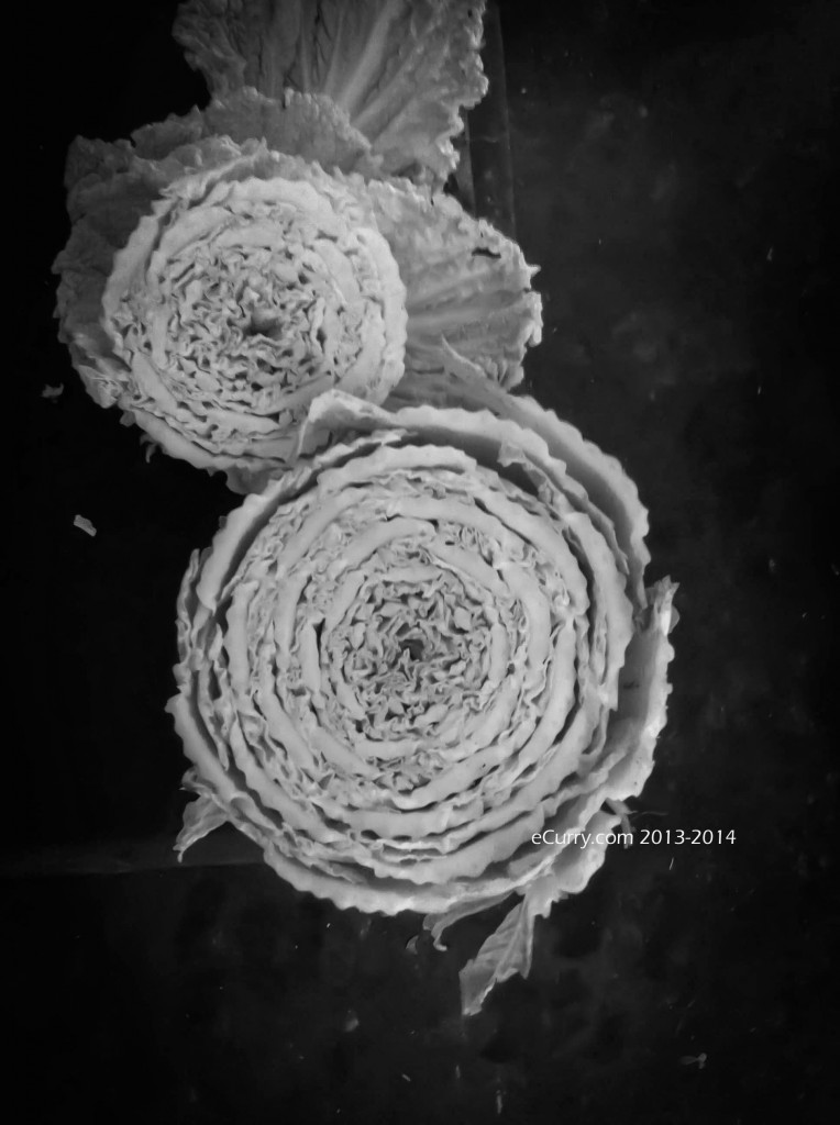 Napa Cabbage BW1